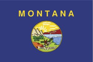 The Montana flag. (tkacchuk/iStock/Thinkstock)