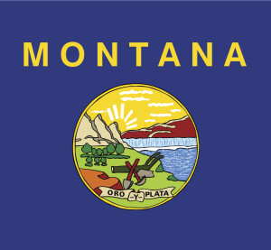 The Montana flag. (tkacchuk/iStock/Thinkstock)