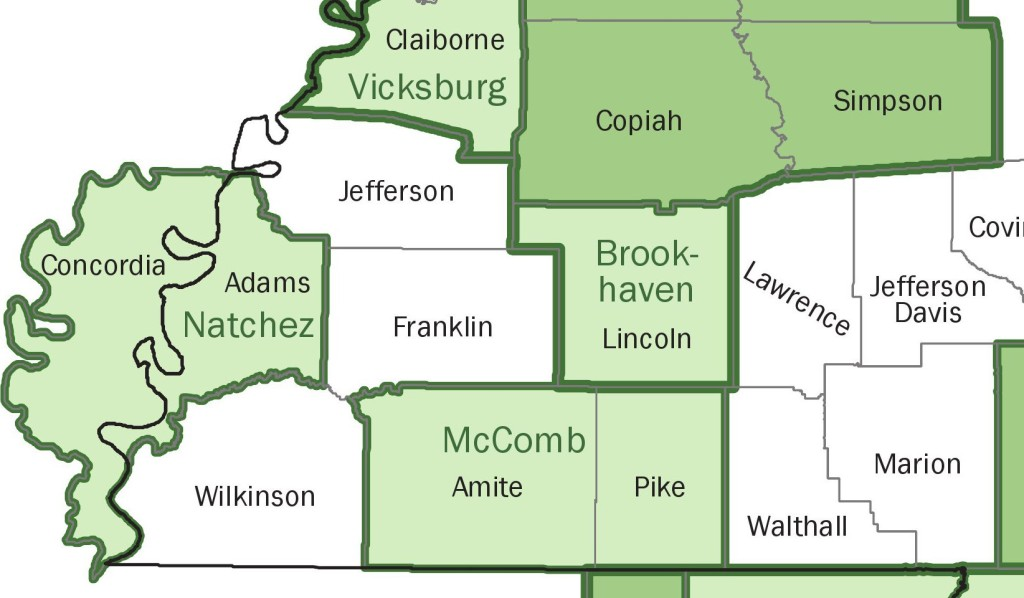 "Brookhaven, Miss., and the area around it is a separate micropolitan area. If State Farm stuck to an accurate survey of solely that area and the surrounding Lincoln County and applied an ""island"" rate to that region, it might be a little more palatable to the plaintiff shop than identical rates across a 360-mile area with no explanation. (Provided by U.S. government agencies)"